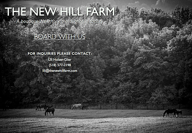 The New Hill Farm